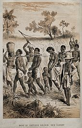 media/galleries/medium/97573-Group_of_men_and_women_being_taken_to_a_slave_market_Wellcome_V0050647.jpg
